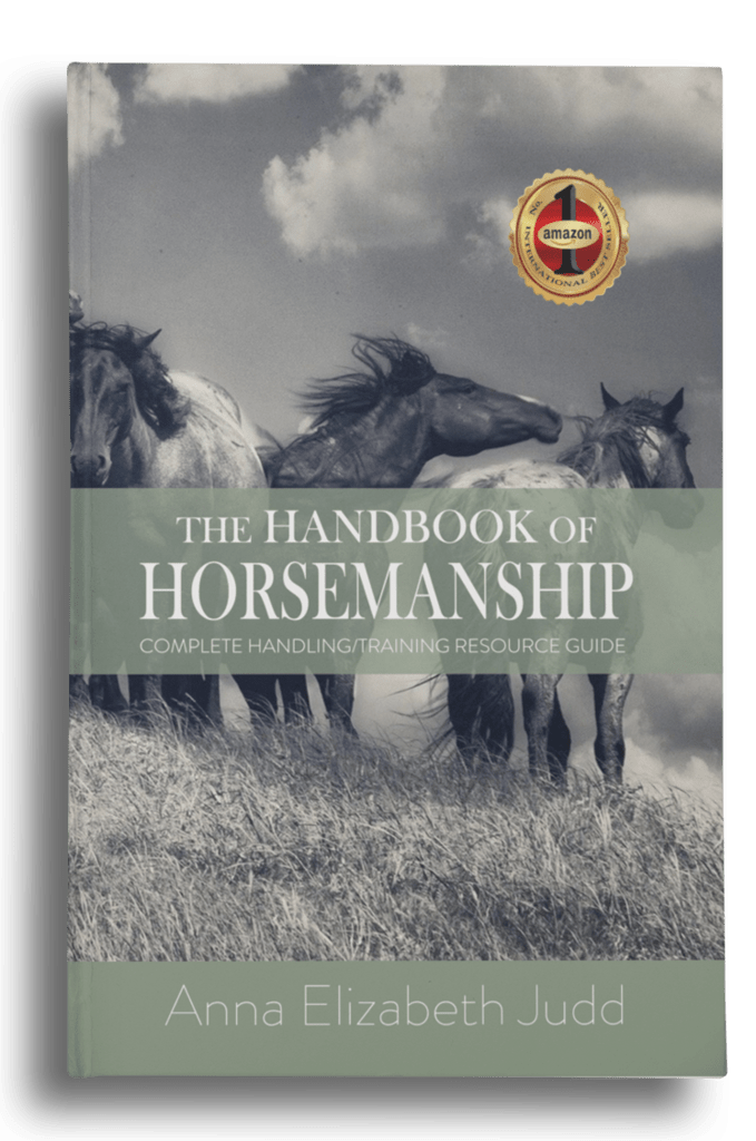 THE HANDBOOK OF HORSEMENSHIP