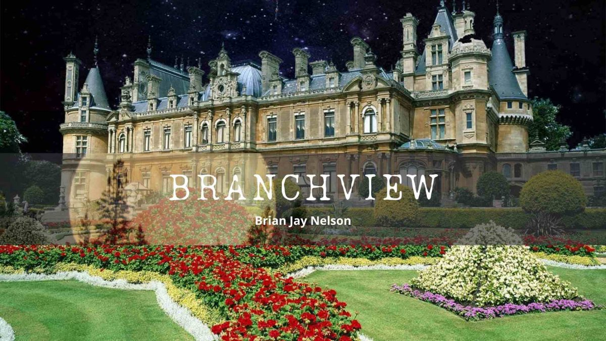 Branchview by Brian Jay Nelson
